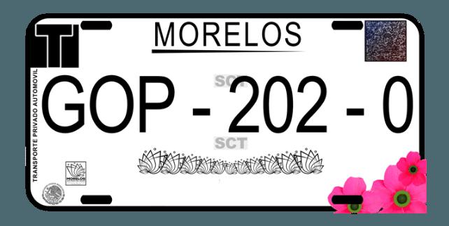 Reemplacamiento Morelos